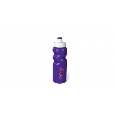 Baltic Water Bottle Purple