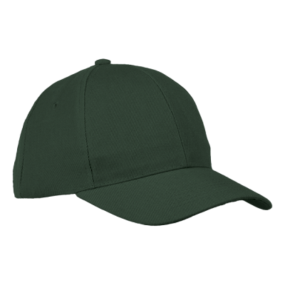 6 Panel Raven Cap Bottle