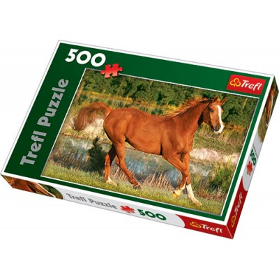 Trefl - 500 Piece Puzzle The Beauty Of Gallop