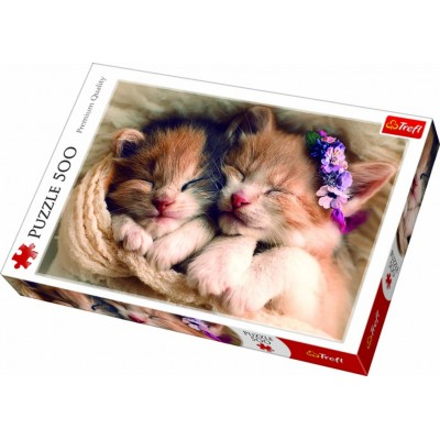 Trefl - 500 Piece Sleeping Kittens